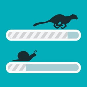 litespeed web server illustration of fast litespeed compared to slow apache