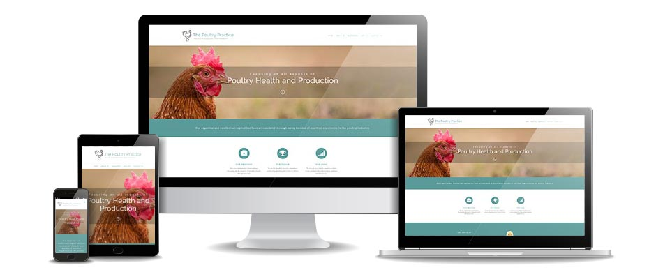 the poultry practice website mockup